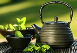 秋季怎样喝茶更健康?多喝这10款茶饮 一冬天不生病