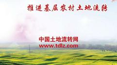 中国土地流转网