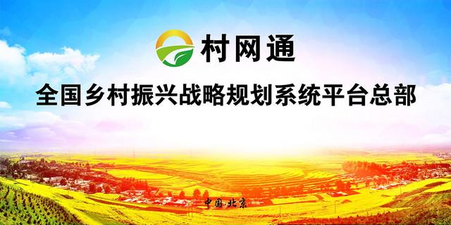 村网通背景.jpg