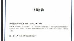 国家知识产权局颁发村聊聊商标注册证