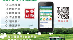 为三农企业建设网站的农网通
